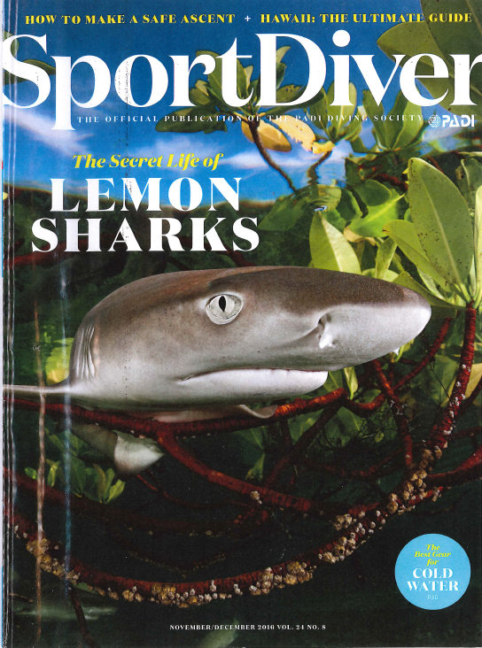 Sport DIver - The Secret Life of Lemon Sharks
